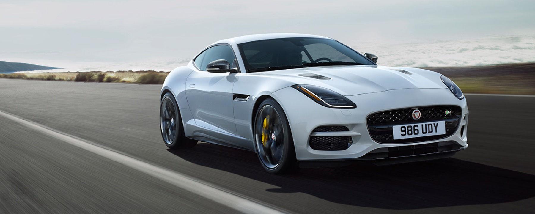 Jaguar kategorisi için resim